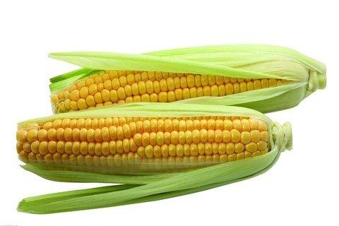 梦见玉米 包谷_周公解梦梦到玉米 包谷是什么意思_做梦梦见玉米 包谷好不好