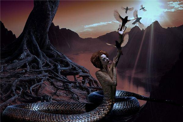 梦见蛇变人_周公解梦梦到蛇变人是什么意思_做梦梦见蛇变人好不好