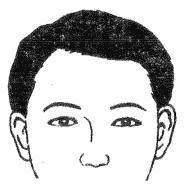 中国易经研究学会相法学习二十八种眉形面相(图)