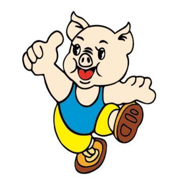 属猪人开店风水讲究,属猪人风水禁忌