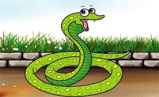 出生在亥时的生肖蛇好不好?