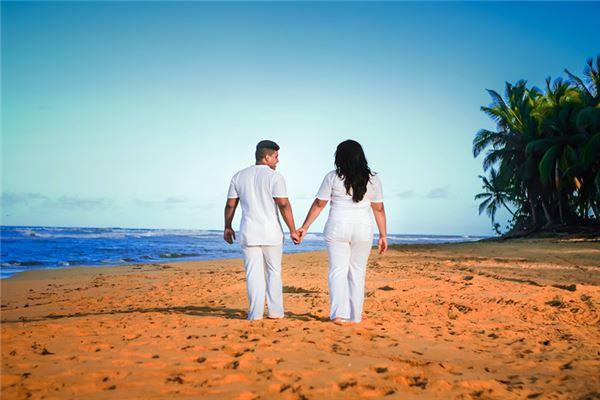 题牛的最佳婚姻组合是什么