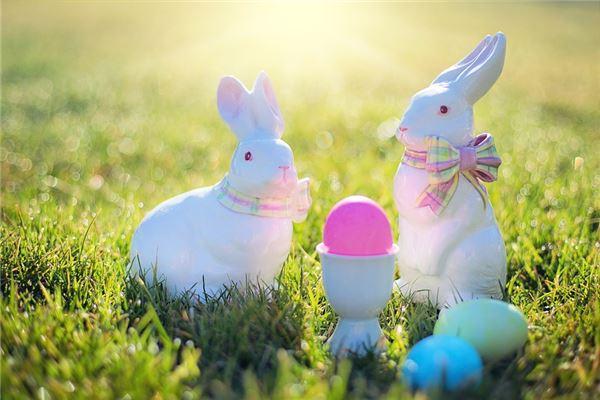 出生运势分析:兔年宝宝几时出生最好_属兔
