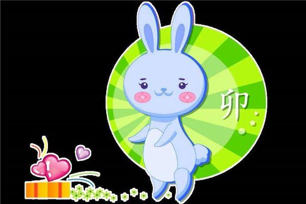 生肖兔的姻缘和命理运势_属兔