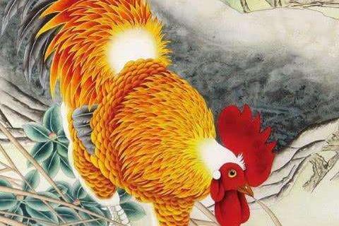 属鸡人出生月命运 属鸡女哪个月份生好